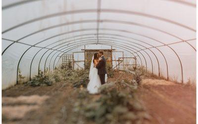 Cloughjordan House Wedding // Orla + Gavin